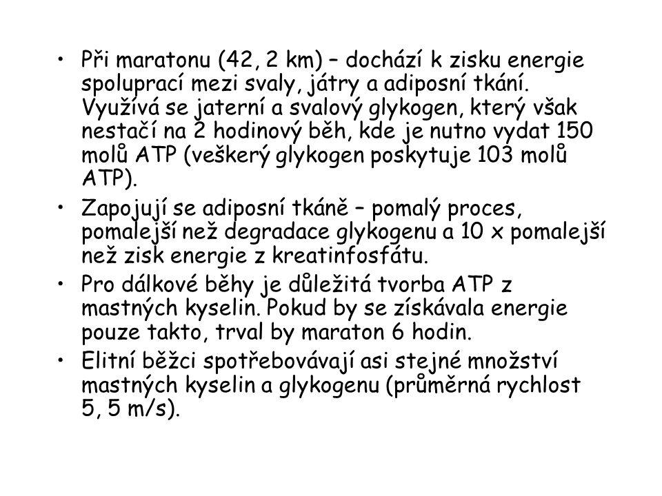 Při maratonu (42, 2 km) – dochází k zisku energie spoluprací mezi svaly, játry a adiposní tkání. Využívá se jaterní a svalový glykogen, který však nestačí na 2 hodinový běh, kde je nutno vydat 150 molů ATP (veškerý glykogen poskytuje 103 molů ATP).