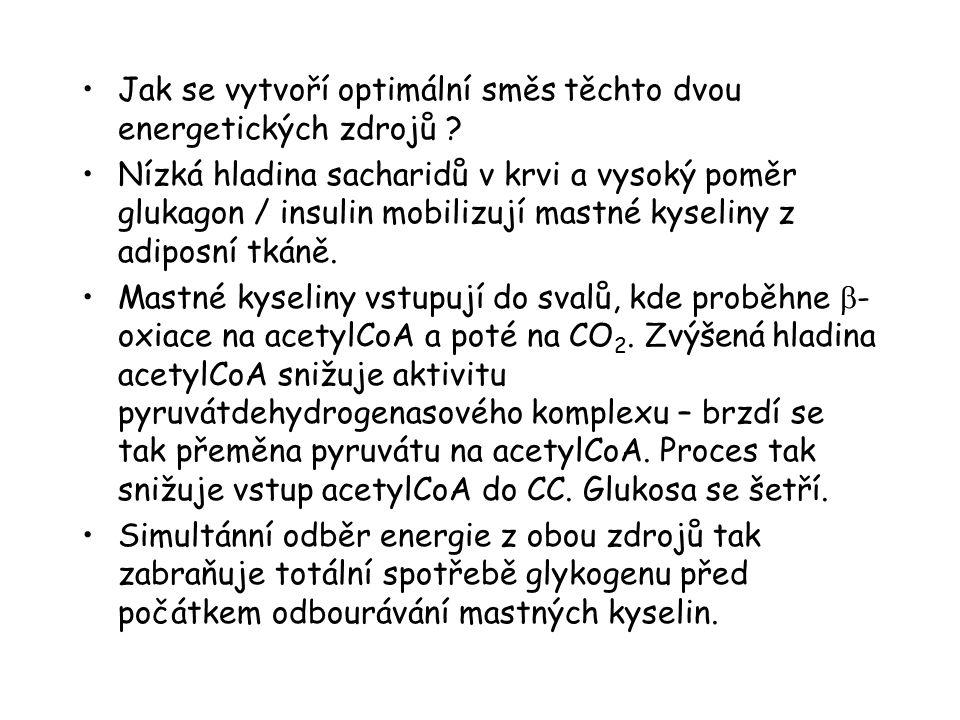 Jak se vytvoří optimální směs těchto dvou energetických zdrojů