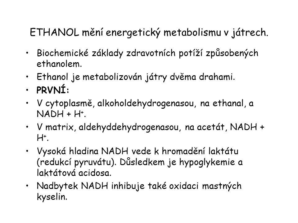 ETHANOL mění energetický metabolismu v játrech.