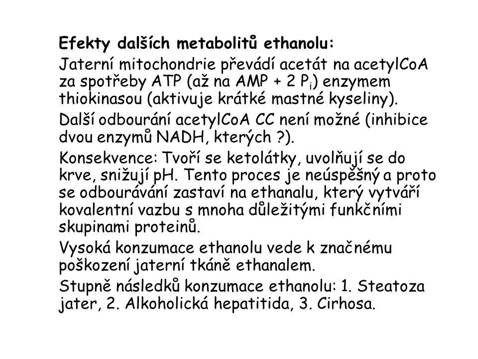 Efekty dalších metabolitů ethanolu: