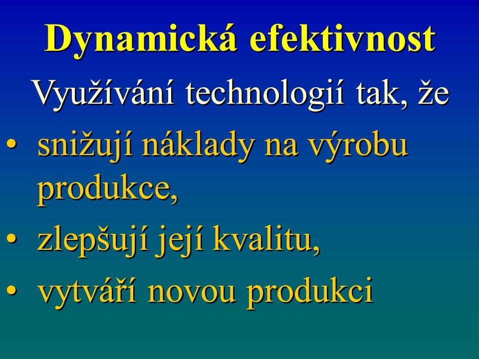 Dynamická efektivnost