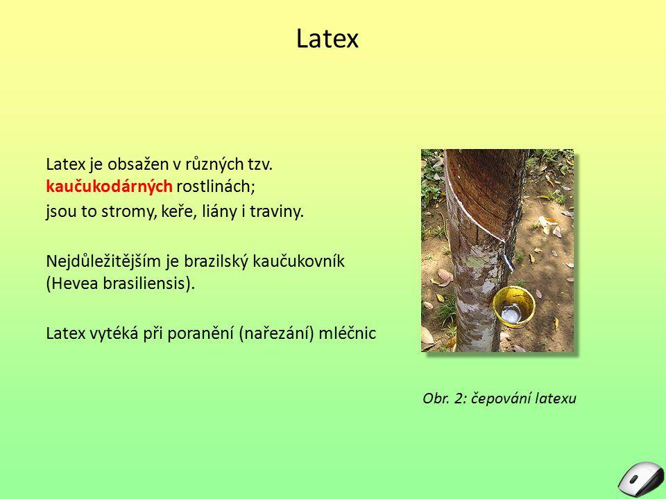 Latex Latex je obsažen v různých tzv. kaučukodárných rostlinách;