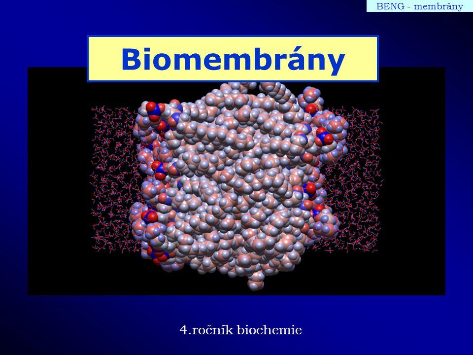 BENG - membrány Biomembrány 4.ročník biochemie