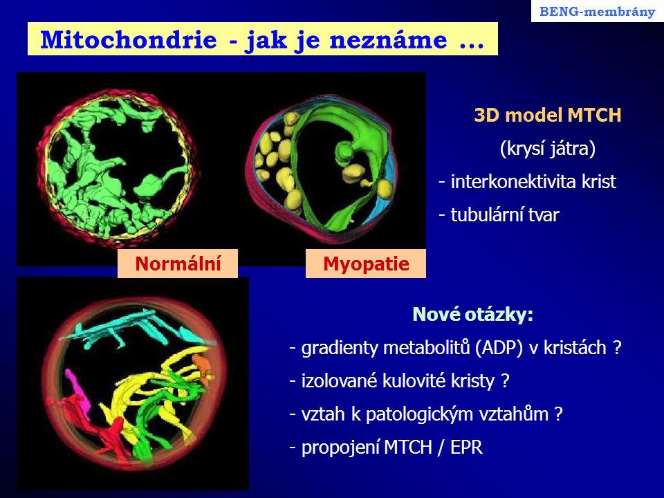Mitochondrie - jak je neznáme ...