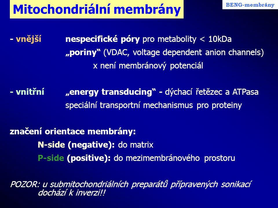 Mitochondriální membrány