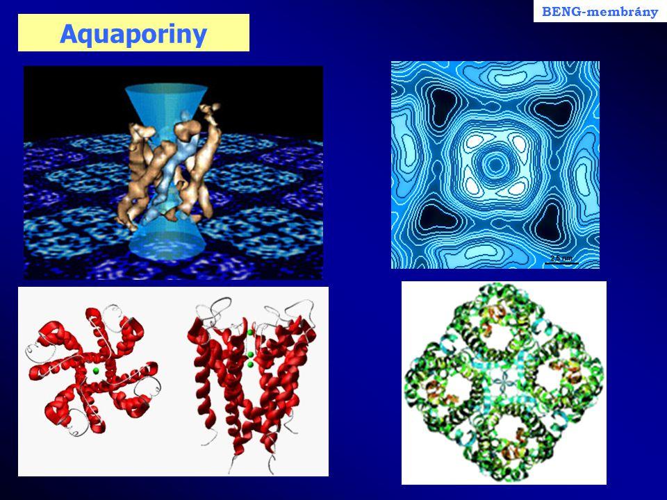 BENG-membrány Aquaporiny