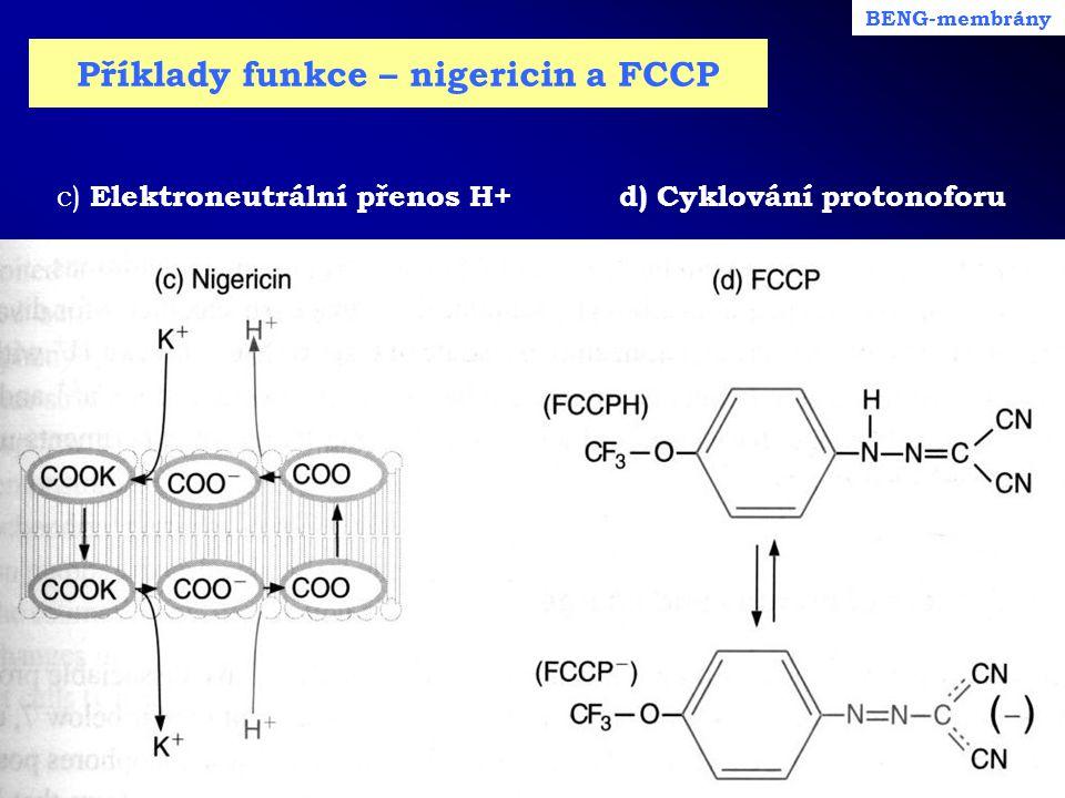 Příklady funkce – nigericin a FCCP