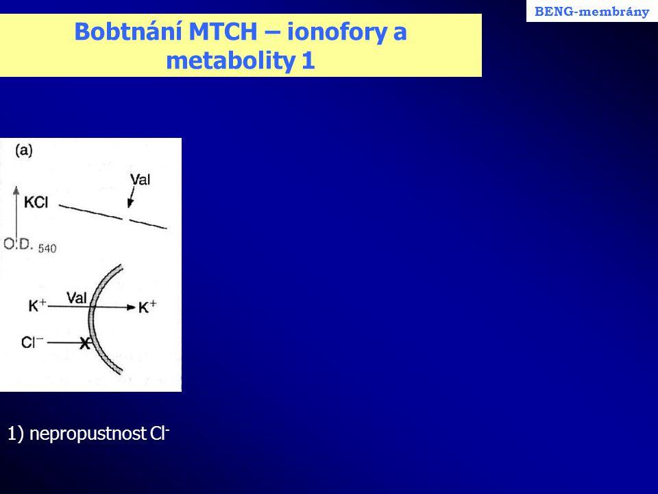 Bobtnání MTCH – ionofory a metabolity 1