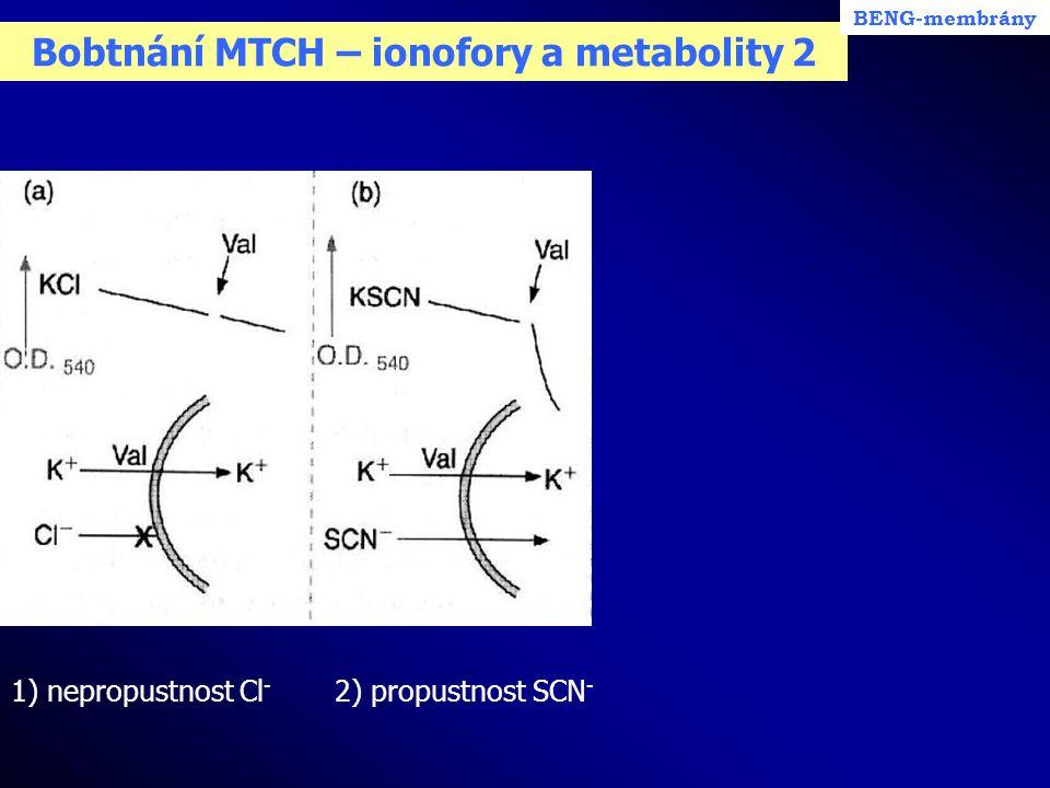 Bobtnání MTCH – ionofory a metabolity 2