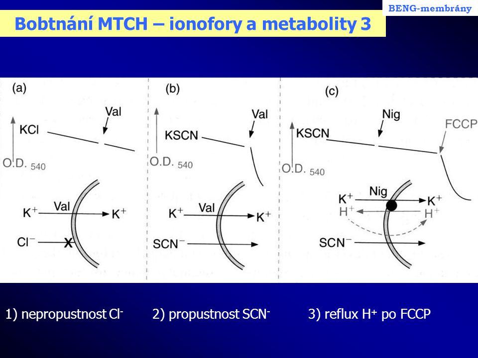 Bobtnání MTCH – ionofory a metabolity 3