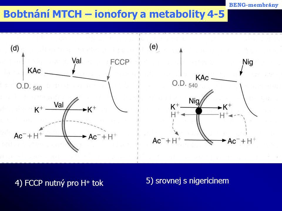 Bobtnání MTCH – ionofory a metabolity 4-5