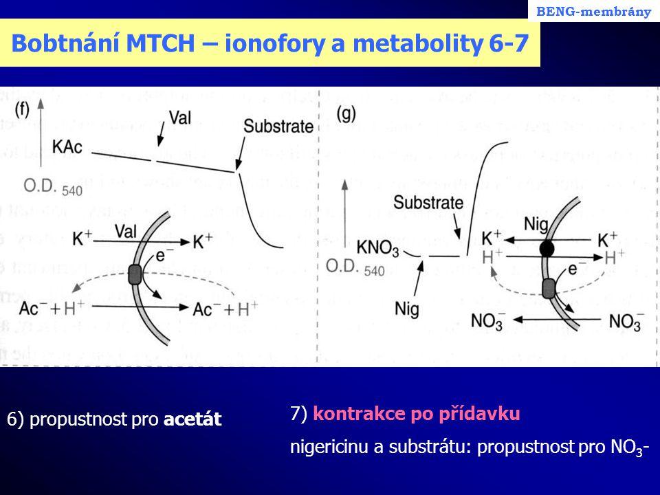 Bobtnání MTCH – ionofory a metabolity 6-7