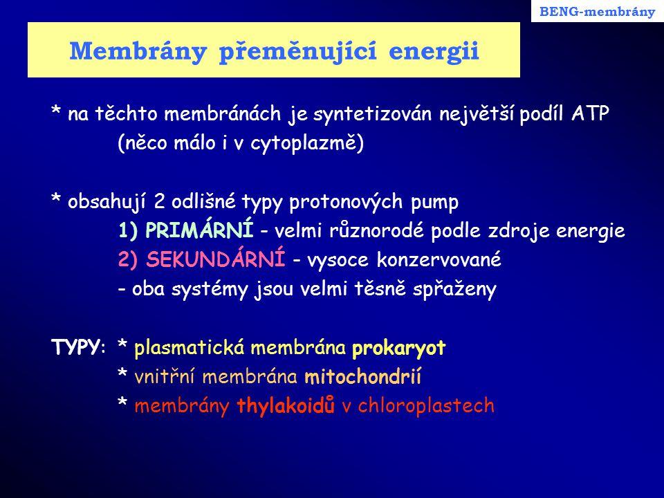 Membrány přeměnující energii