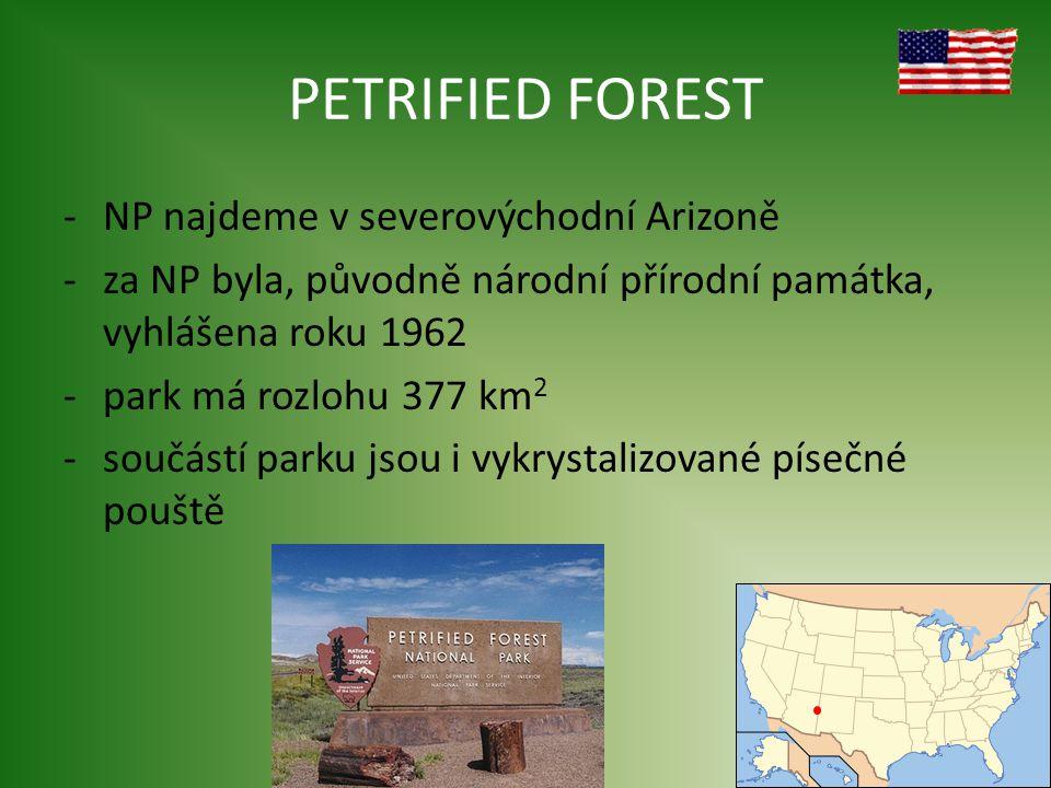 PETRIFIED FOREST NP najdeme v severovýchodní Arizoně
