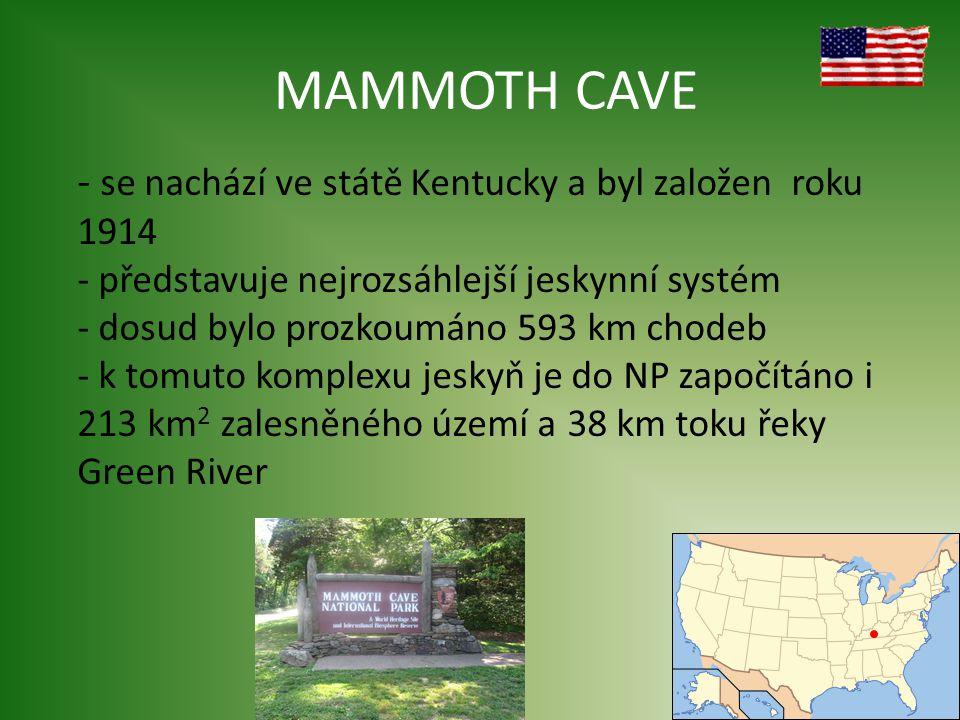 MAMMOTH CAVE se nachází ve státě Kentucky a byl založen roku 1914