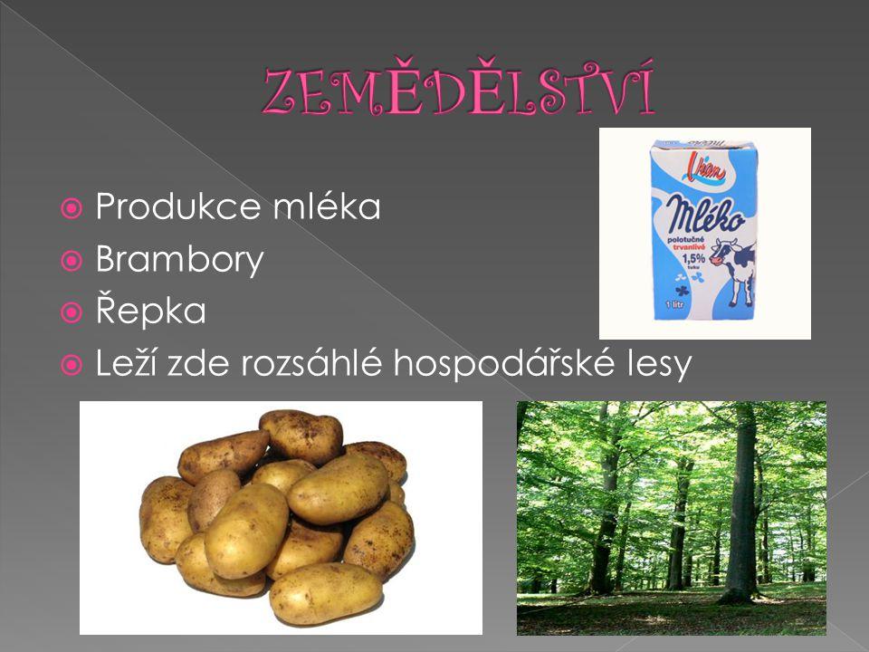 ZEMĚDĚLSTVÍ Produkce mléka Brambory Řepka