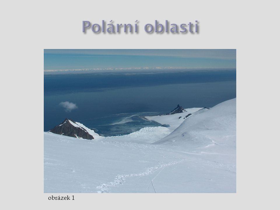 Polární oblasti obrázek 1