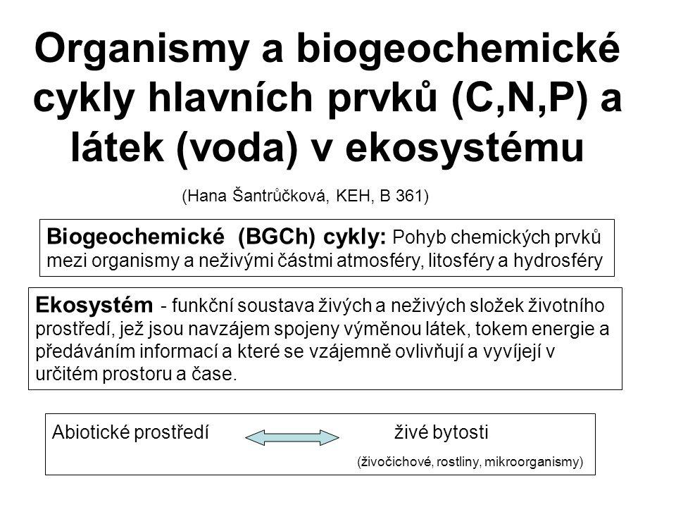 Organismy a biogeochemické cykly hlavních prvků (C,N,P) a látek (voda) v ekosystému