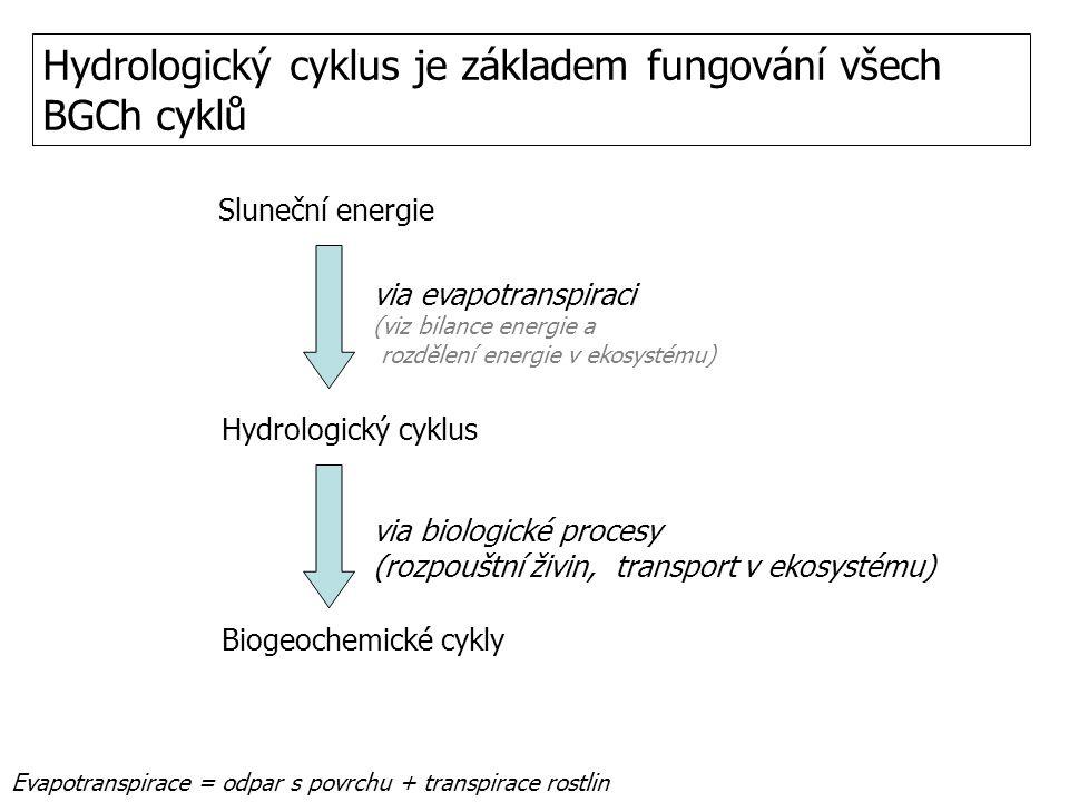 Hydrologický cyklus je základem fungování všech BGCh cyklů