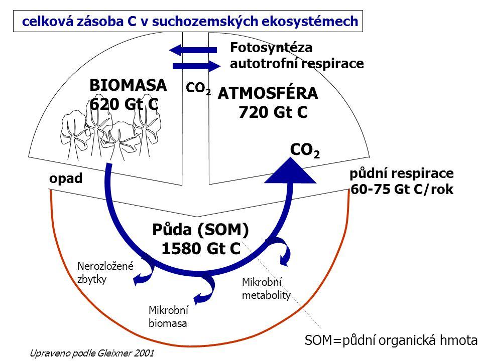 BIOMASA 620 Gt C ATMOSFÉRA 720 Gt C CO2 Půda (SOM) 1580 Gt C