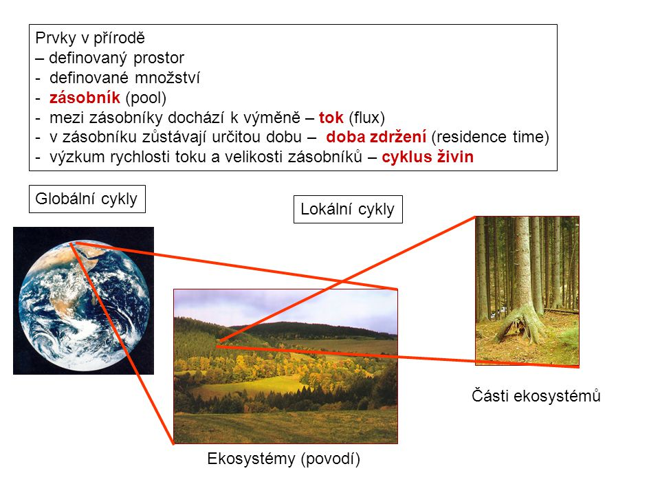 Prvky v přírodě – definovaný prostor. - definované množství. - zásobník (pool) - mezi zásobníky dochází k výměně – tok (flux)