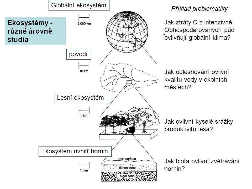 Ekosystémy - různé úrovně studia