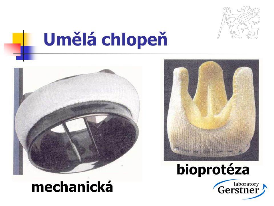 Umělá chlopeň bioprotéza mechanická