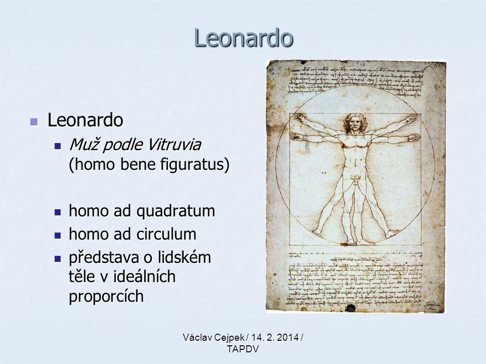 Leonardo Leonardo Muž podle Vitruvia (homo bene figuratus)