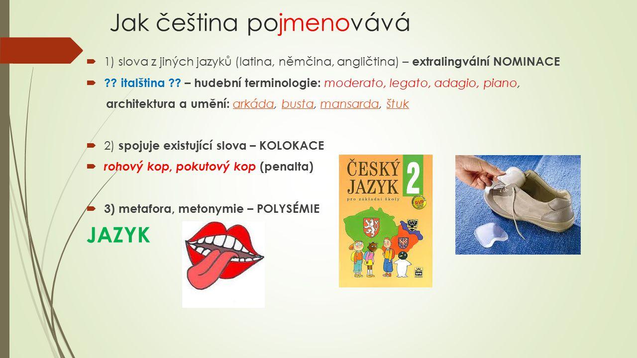Jak čeština pojmenovává