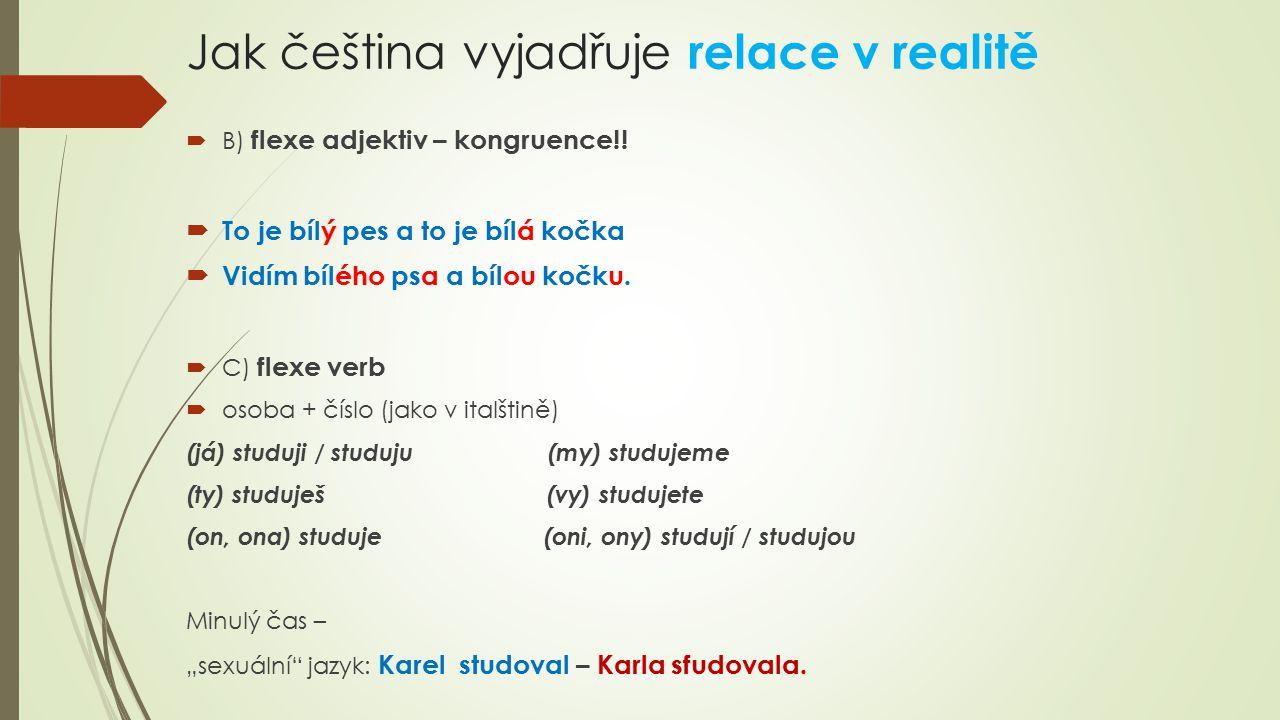 Jak čeština vyjadřuje relace v realitě