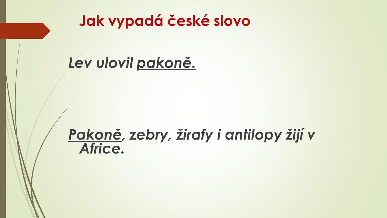 Jak vypadá české slovo Lev ulovil pakoně. Pakoně, zebry, žirafy i antilopy žijí v Africe.