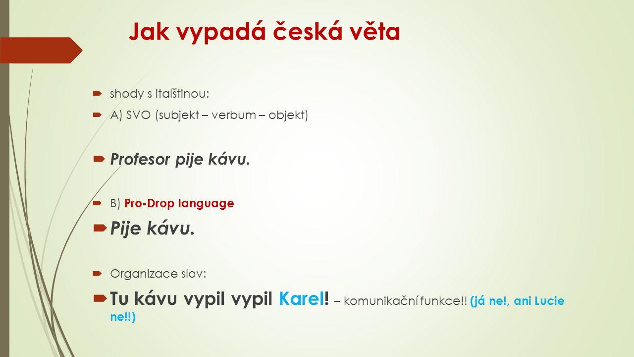 Jak vypadá česká věta Pije kávu.