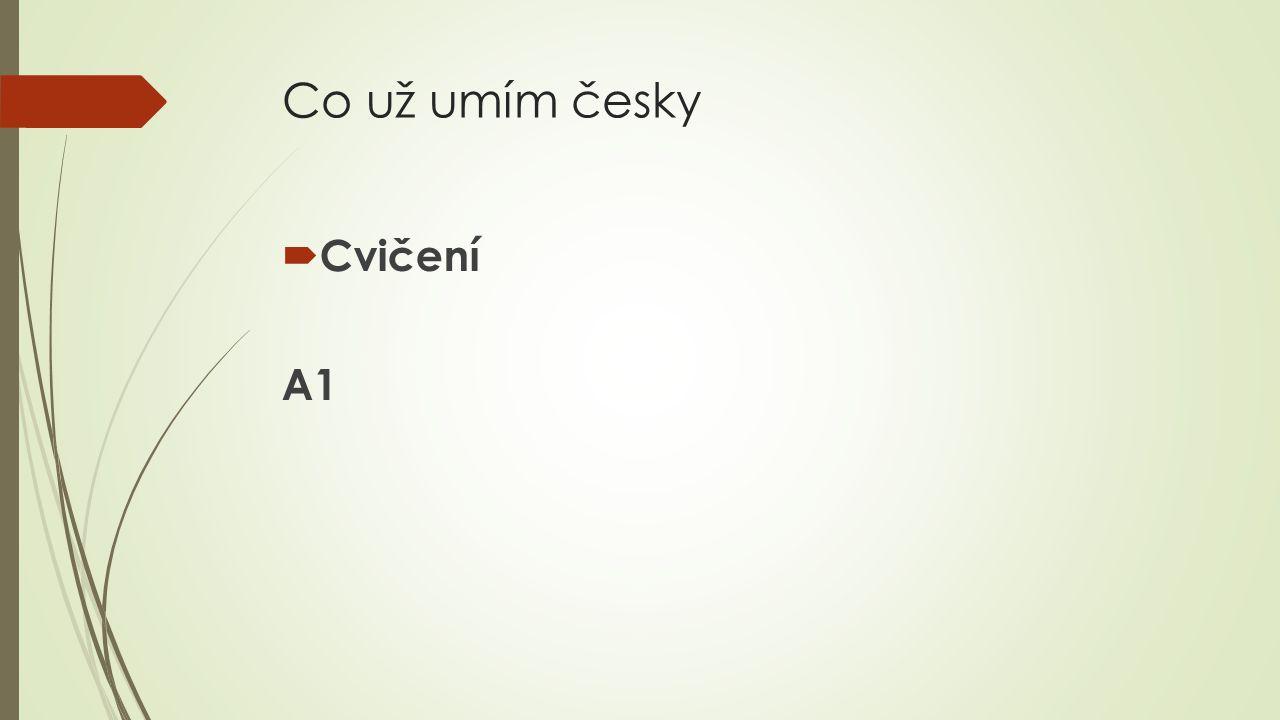 Co už umím česky Cvičení A1