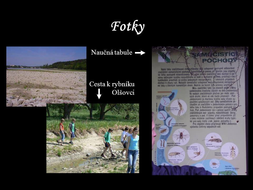 Fotky Naučná tabule Cesta k rybníku Olšovci