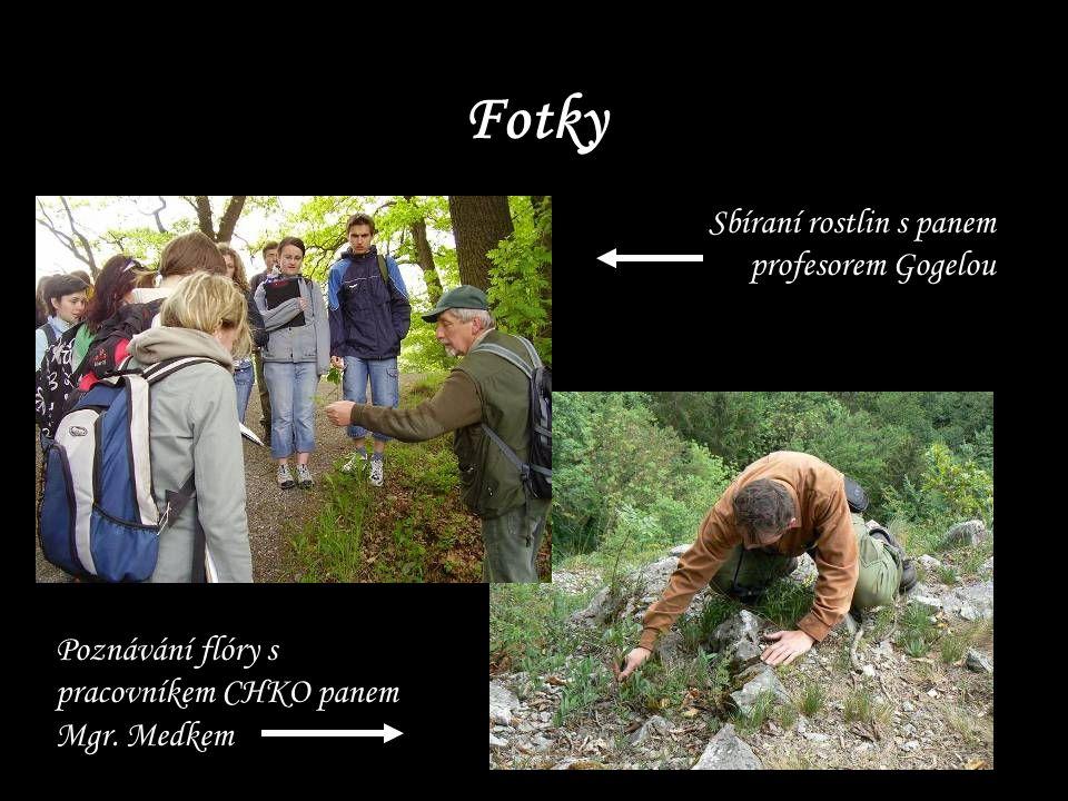 Fotky Sbíraní rostlin s panem profesorem Gogelou