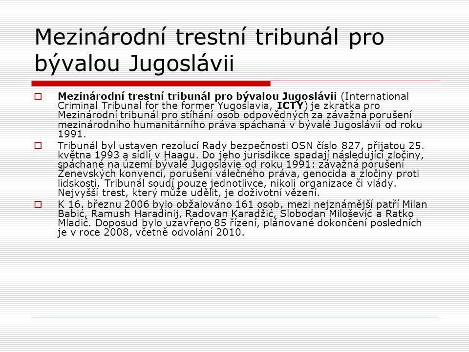 Mezinárodní trestní tribunál pro bývalou Jugoslávii
