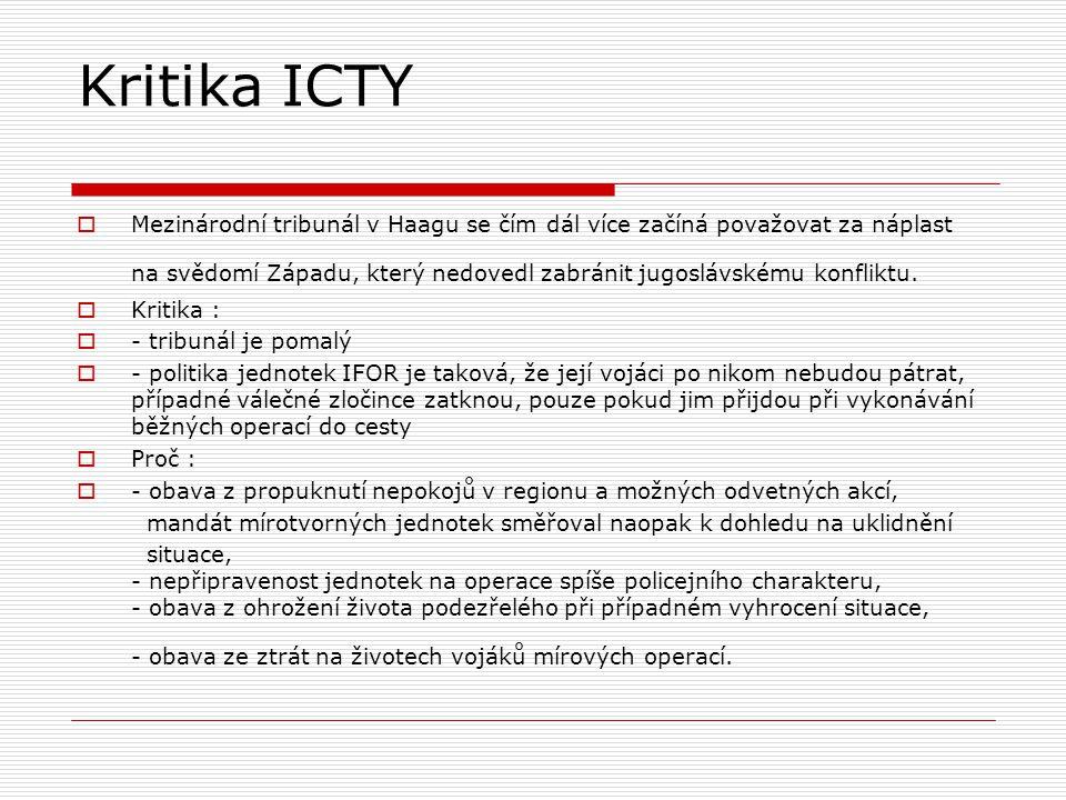Kritika ICTY