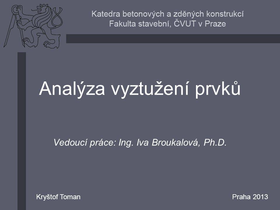 Analýza vyztužení prvků Vedoucí práce: Ing. Iva Broukalová, Ph.D.