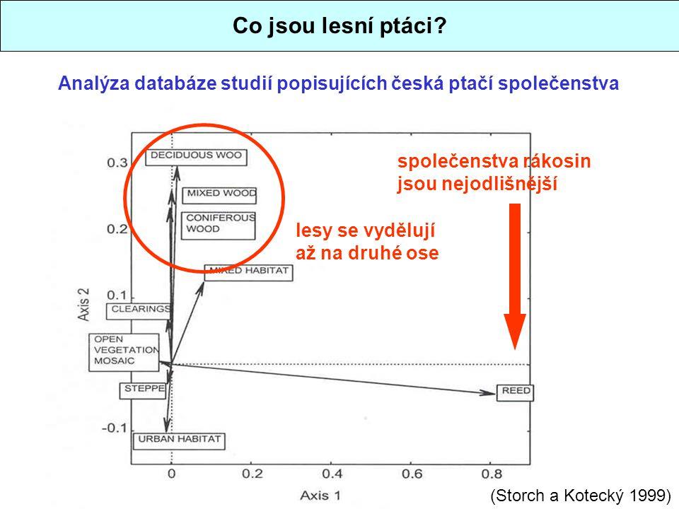 Co jsou lesní ptáci Analýza databáze studií popisujících česká ptačí společenstva. společenstva rákosin jsou nejodlišnější.