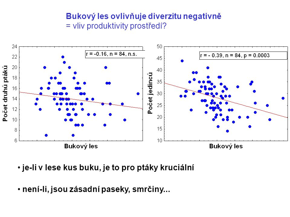 Bukový les ovlivňuje diverzitu negativně