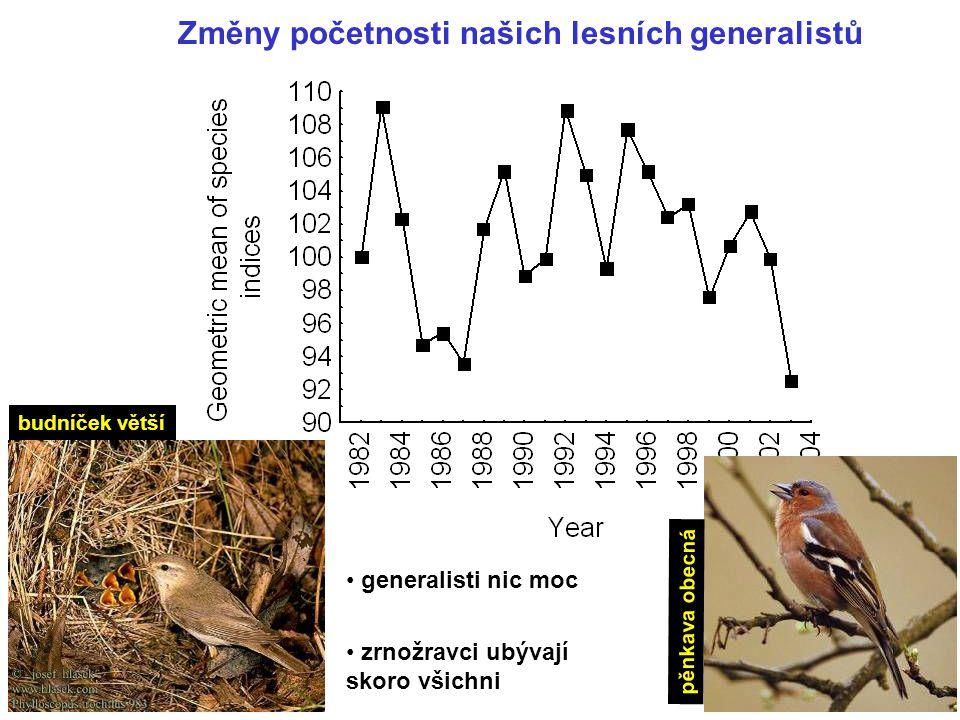 Změny početnosti našich lesních generalistů