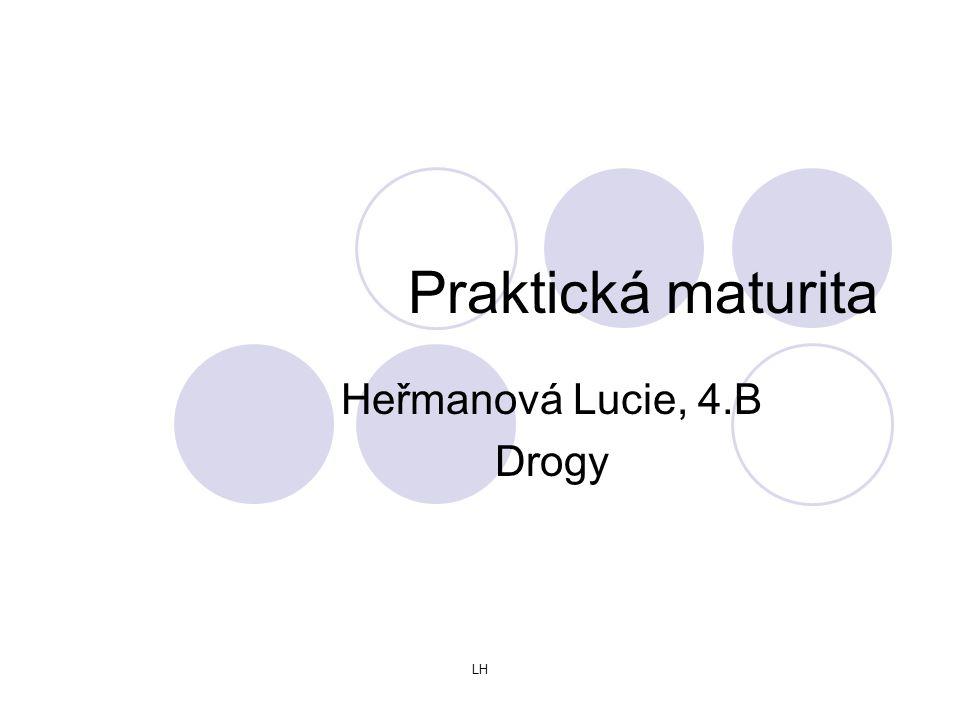 Heřmanová Lucie, 4.B Drogy
