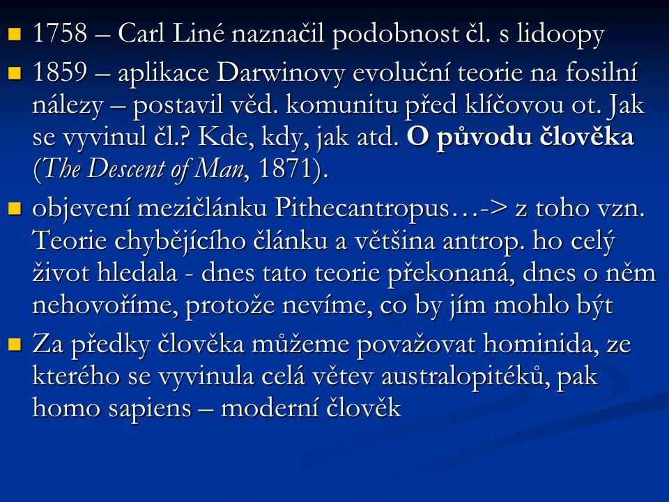 1758 – Carl Liné naznačil podobnost čl. s lidoopy