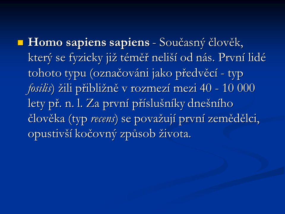 Homo sapiens sapiens - Současný člověk, který se fyzicky již téměř neliší od nás.