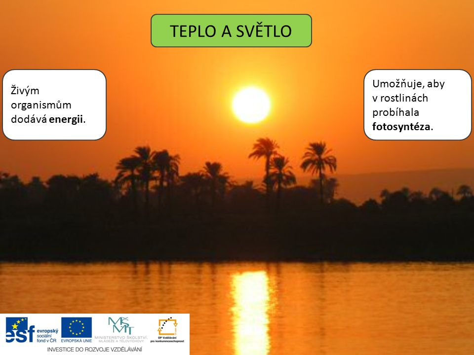 TEPLO A SVĚTLO Umožňuje, aby Živým organismům dodává energii.