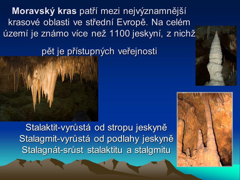 Moravský kras patří mezi nejvýznamnější krasové oblasti ve střední Evropě. Na celém území je známo více než 1100 jeskyní, z nichž pět je přístupných veřejnosti
