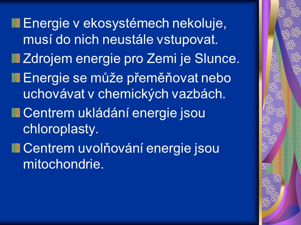 Energie v ekosystémech nekoluje, musí do nich neustále vstupovat.