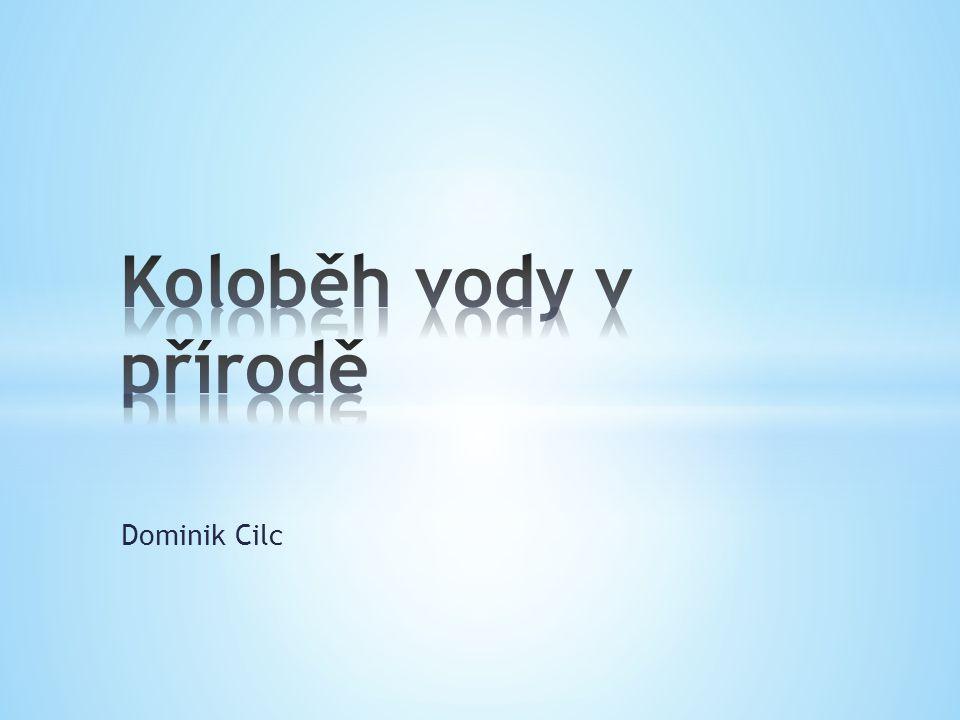 Koloběh vody v přírodě Dominik Cilc