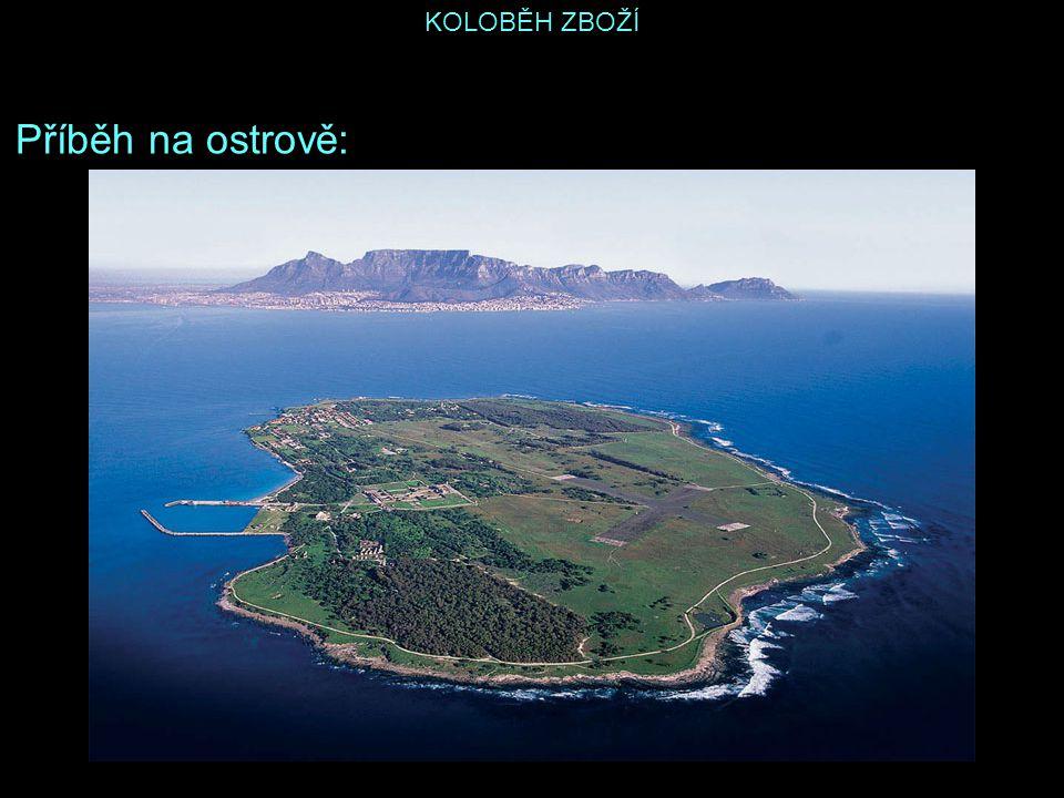 Příběh na ostrově: KOLOBĚH ZBOŽÍ