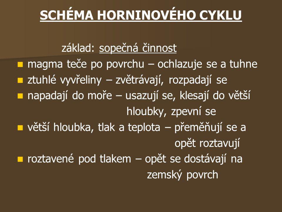 SCHÉMA HORNINOVÉHO CYKLU
